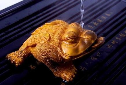 梦到蟾蜍在水里是什么意思?-梦见蟾蜍是吉兆还是凶兆?-