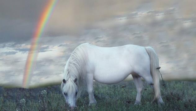 1966年属马的贵人是什么生肖?-属马的和哪些星座最好?-