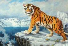 正月初一春节出生的属虎人命运好不好?属虎春节出生是什么命?