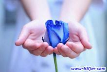 梦见蓝色玫瑰花